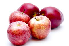 Red apples. On white background Stock Image
