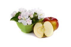 Red apples and white flowers Stock Photography