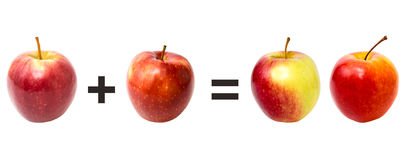 Red apples on a white, mathematics. Red apples on a white background, mathematics stock photos