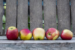 Red apples with wood background Royalty Free Stock Image