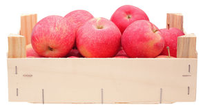 Red apples in wooden box. On white background Royalty Free Stock Photo