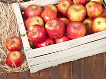 Red apples in a wooden box Stock Photos
