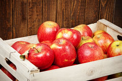 Red apples in a wooden box close up Stock Photography