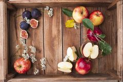 Red apples on a wooden box with leaves and flowers. Autumn harvest of fruits. Top view. Free space for text. royalty free stock photo