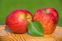 Red apples on wooden plate. Red apples on a wooden plate royalty free stock photography