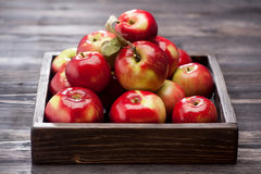 Red apples in wooden tray Stock Image