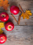 Red apples and yellow leaves Royalty Free Stock Photos