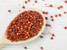 Red Aromatic Pepper Corns Stock Image