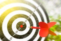 Red arrows hitting the target. Metaphor to target marketing or target arrow concept, Selective focus, 3D Render Royalty Free Stock Photos