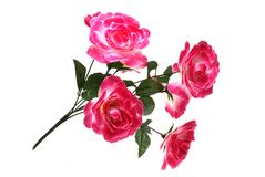 Red artificial flowers. It is isolated on white background Stock Photo