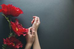 Red artificial flowers and female hands solitary on a black background, the top view. Copy space for holiday card or banner on. Black background stock photography