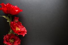 Red artificial flowers solitary on a black background, the top view. Copy space for holiday card or banner on black background.  royalty free stock images