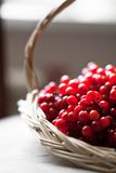 Red ash in basket. Closeup royalty free stock photography