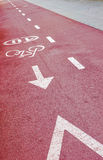 Red asphalt bicycle path. Royalty Free Stock Photo