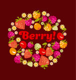 Red assorted berry set. Royalty Free Stock Photos