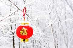 Red auspicious lantern. A red lantern writing best wishes, in chinese 'fu', means joyous or happy time. It was shot during new year's days Royalty Free Stock Images