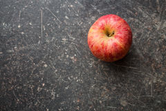 Red autumn apple Royalty Free Stock Images