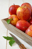 Red autumn apples on gray tray and knife Stock Photo