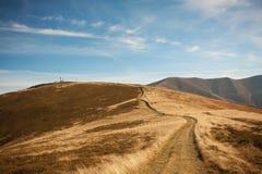 Red autumn in a Carpathian mountains. Borzhava ridge. National park of Ukraine. Stock Images