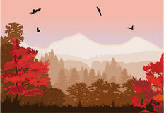 Red autumn forest near mountains Stock Images