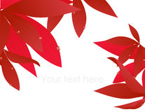 Red autumn leaf branch. Illustration, AI file included Royalty Free Stock Photography