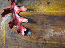 Red autumn leaf on a dirty table Royalty Free Stock Photography