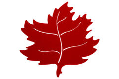 Red Autumn Leaf Stock Image