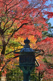 Red autumn leaves and old lantern, Kyoto Japan. Stock Photo
