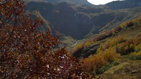Red autumn leaves in the wind on background of high mountains stock video footage