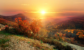 Red autumn in mountains Stock Photos