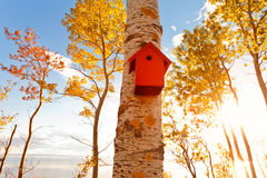 Red aviary, bird house. In beautiful autumn sun stock photo