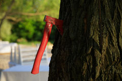 Red Ax in the tree Stock Image