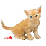 Red baby cat, little kitten vector illustration silhouette on the white background isolated, made in triangle polygons Stock Photos