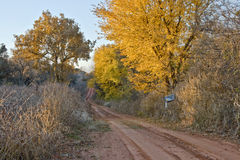 Red Back Road-6609. Autumn colors along a red clay country road Stock Photos