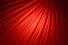 Red Background. Deep red background decoration with curved lines stock illustration