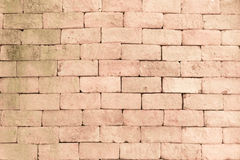 Red background of brick Stock Image