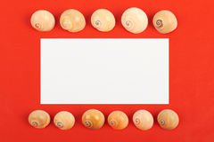 Red background. Card with shells on red background Royalty Free Stock Photos