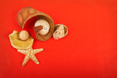 Red background. Card with shells on red background Royalty Free Stock Photography