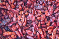 Red background of dried bird peppers Capsicum annuum Pequin pepper piquin. Food ingredient, horizontal aspect stock images