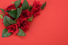 Red background with floral decor Stock Photos