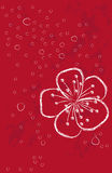 Red background with flower Royalty Free Stock Photos