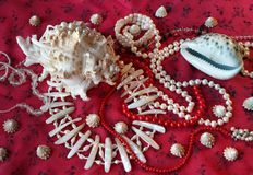 Red background-jewerly. Magnificent background with sea cockleshells and pearls Royalty Free Stock Image