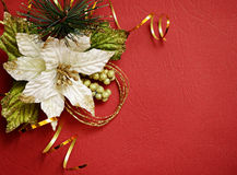 Red background with pionsettia Stock Image