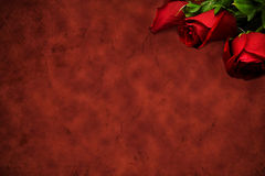 Red background with red roses Stock Photography