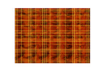 Red background in the Scottish cage Royalty Free Stock Image