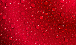Red background of water drops Stock Images