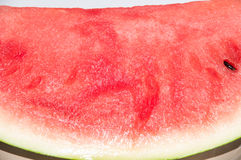 Red background of watermelon Royalty Free Stock Image
