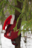 Red backpack hanging on the tree, Stock Photos
