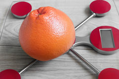 Red balance scale with grapefruit Royalty Free Stock Photos