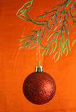 Red ball. Christmas decoration with red ball hanging on pine tree branch on red background Stock Photo